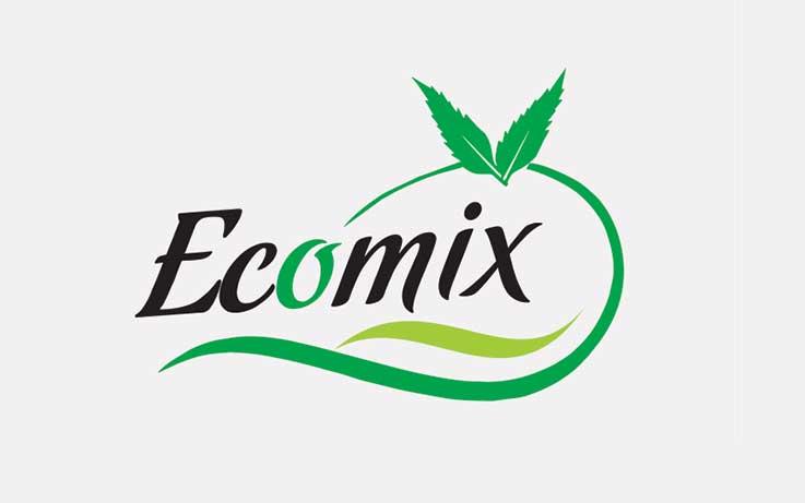 Ecommerce Websites Development Company In Delhi
